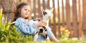 Kinderfotografie Ziege | Fotograf bilderschlag Erfurt