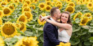 Hochzeitsfotografie mit einem Brautpaar im Sonnenblumenfeld bilderschlag